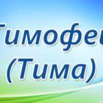 timofei
